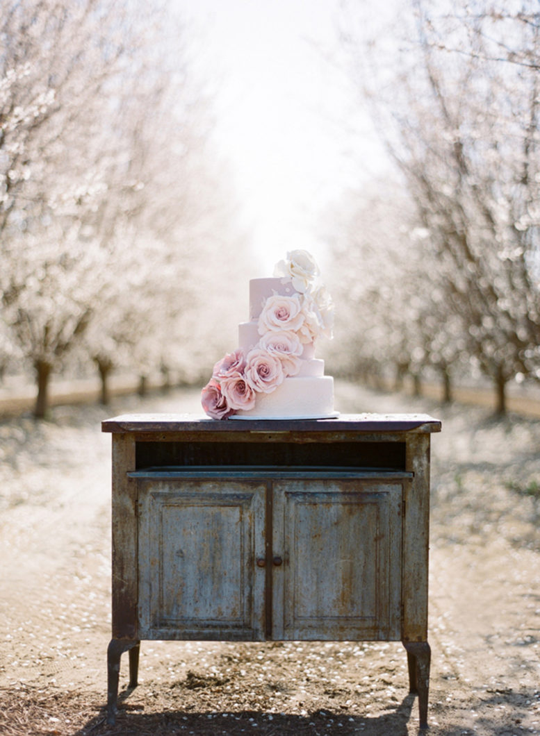 stephanie_williams_almond_orchard_007